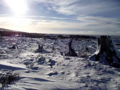 Invierno Fotografía de Luis Jerez