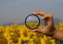 Si los filtros cumplen su función, ayudan a comprender la realidad. Fotografía de Marco Magrini