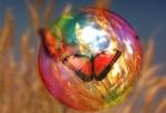 Mariposa en la burbuja - imagen de Geralt