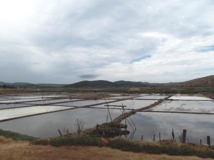 Plantaciones de sal Fotografía de Sandra Rojas