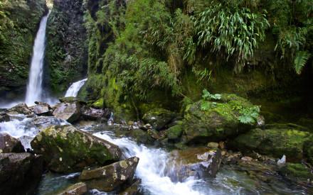 Parque Pumalín 4 Gentileza parquepumalin.cl
