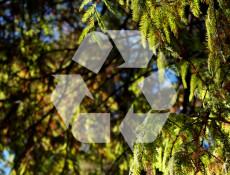 recicla_chile