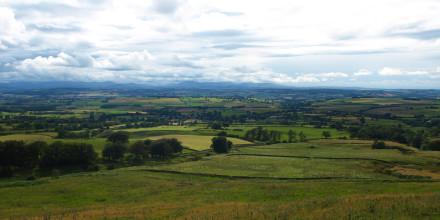 Campos de Escocia