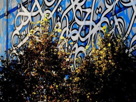 instituto-del-mundo-arabe-fotografia-de-mauricio-tolosa