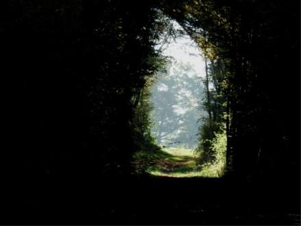 salida-fotografia-de-mauricio-tolosa