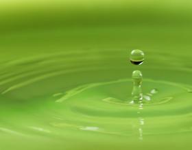 water, drop, liquid, fluid, flow, transform, ball, impact, silence, peace, mindfulness, mindful, green, meet, soft, spiritual, health, beauty, Environmental protection