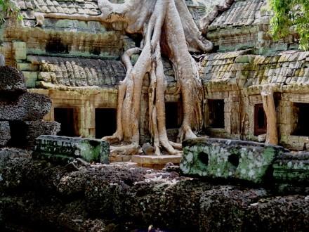 Nuevas configuraciones. Angkor Camboya, 2006. Fotografía de Mauricio Tolosa.